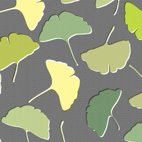 ginkgo in gray