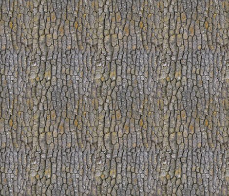 Garry_Oak_bark_-pattern fabric by koalalady on Spoonflower - custom fabric
