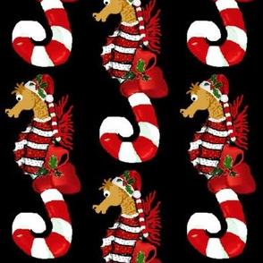 Simon the Seahorse Canes
