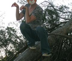 Rrrsea-vs.-tree_comment_24901_preview