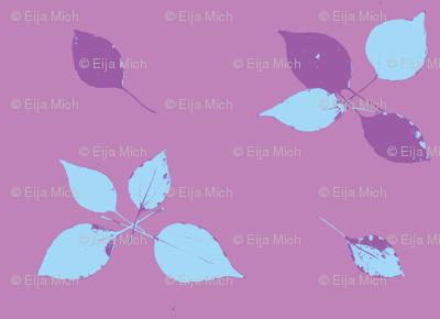 leaves on purple