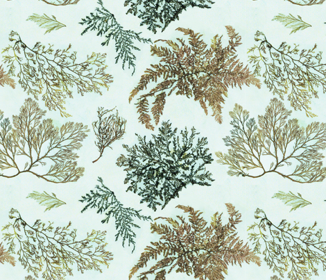 Flowers of The Sea fabric by dianabrennan on Spoonflower - custom fabric