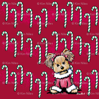 SMALL Girlie Yorkie Candy Canes