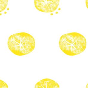 motif_oursins_sun