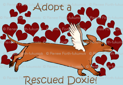Adopt a Rescue Doxie Red Dog