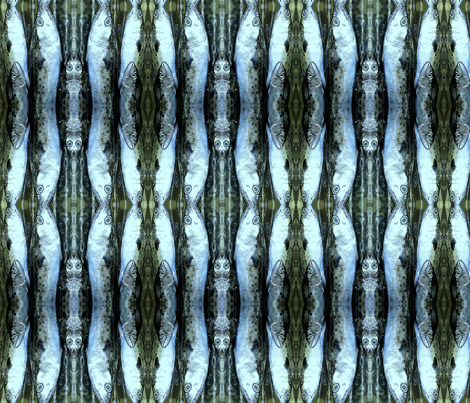 silverfishpix-ed-ed fabric by ja2 on Spoonflower - custom fabric