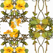 yellow_nasturtium_pattern