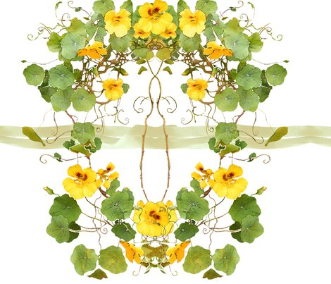 Rrnasturtium-chair_back_shop_preview