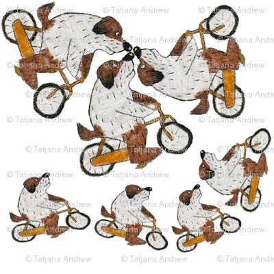 Maxipes Fik on a bike