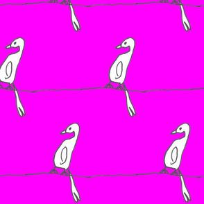 little creative * birdsonwire