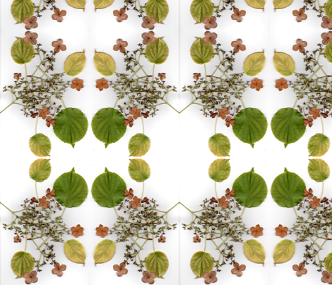 shrub fabric by seona on Spoonflower - custom fabric