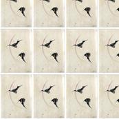 animal-bats-japanese-flying
