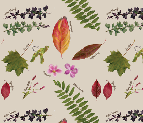 Plant Collection fabric by wildnotions on Spoonflower - custom fabric