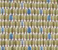 Rrrtrees_blue_comment_31944_thumb