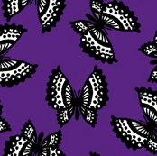 Rblack_lace_butterflies_-_purple_shop_thumb