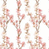 Rrrrralt_spring_blossoms_shop_thumb
