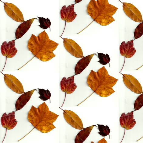 leaf_combo fabric by anniezs on Spoonflower - custom fabric