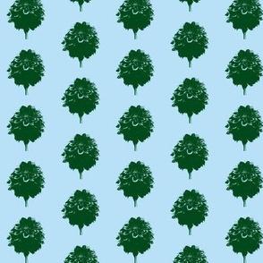 Green dahlias