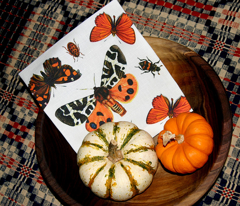 Rrboo-tiful_butterflies_comment_30090_preview