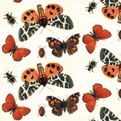 Rrboo-tiful_butterflies_shop_thumb