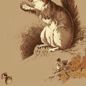 Hazel Squirrel