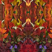 Rleaves__fall__amy__flowers__red__orange_green_collage_001_ed_shop_thumb