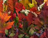 Rleaves__fall__amy__flowers__red__orange_green_collage_001_ed_thumb