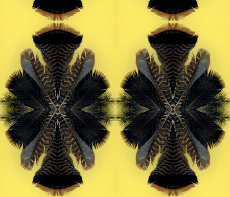 feather fan 2 on yellow paper