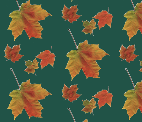 Maple Eye Candy fabric by serenity_ii on Spoonflower - custom fabric
