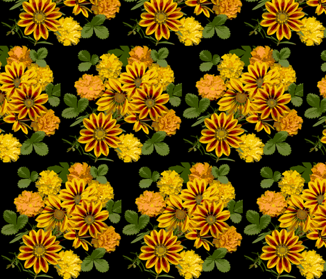 gazanias fabric by oakhilldesigns on Spoonflower - custom fabric