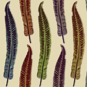 velvet_leaves