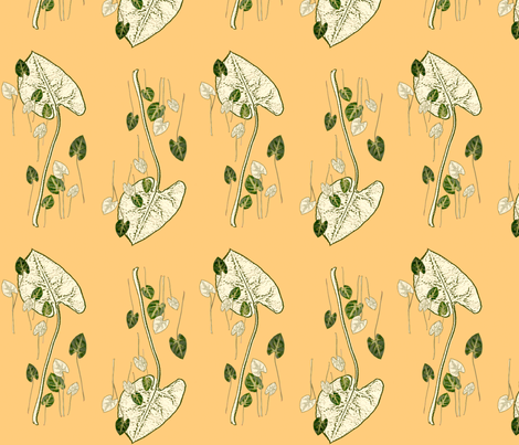 Double fiesta fabric by gigimoll on Spoonflower - custom fabric
