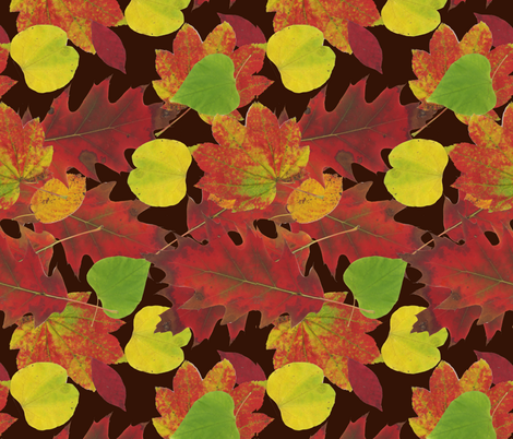 Coffee and Fall Leaves - full size fabric by owlandchickadee on Spoonflower - custom fabric