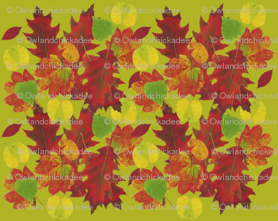 Fall Leaves Green Background