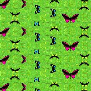 Bright Butterflies on Green