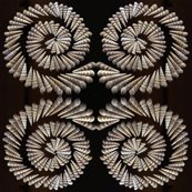 Rrrspiral_shells_20inch_4tile_in_copy_shop_thumb