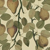 Rrvintage_pears_fabric_pattern_-_sun_faded_3_shop_thumb