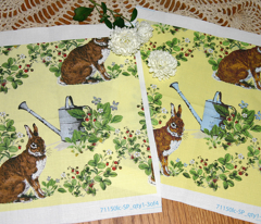 Rrbunny_in_the_berry_patch_copy_comment_30929_preview