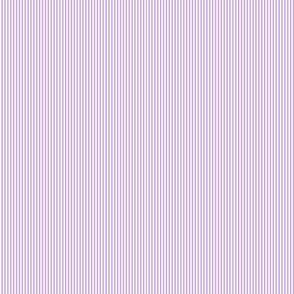 Multi Stripes - Purple