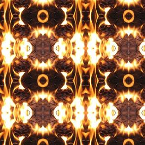 IMG_2854 -- Pinecone Blaze