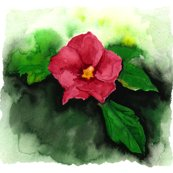 Rrrrrrrflower_copy_shop_thumb