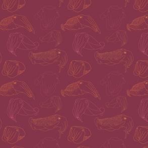 Moody Cuttlefish