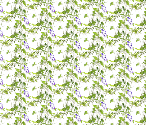 Morning Glories fabric by siya on Spoonflower - custom fabric