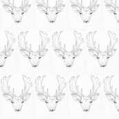 Rfallow_deer_shop_thumb