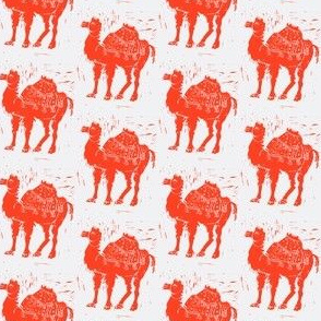 Red Camels Revisited