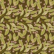 Rreucalyptus_brown2_shop_thumb