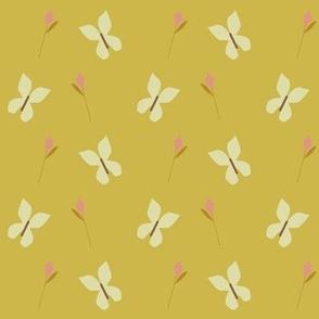 butterfly-patt