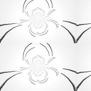 Spideris