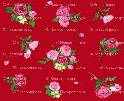 basic flowers rosapomposa red