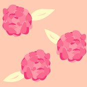 Rrpeony_shop_thumb